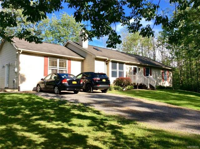 9055 Sunset Drive, Colden, NY 14033 (MLS #B1291576) :: Lore Real Estate Services