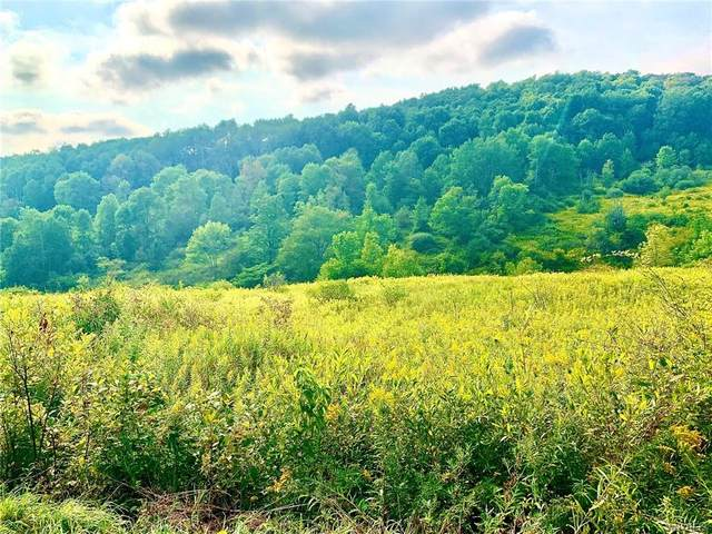 Lot 8 Horn Hill, Ellicottville, NY 14731 (MLS #B1292429) :: Robert PiazzaPalotto Sold Team