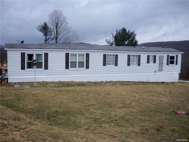 4205 Nys Route 242, Machias, NY 14101 (MLS #B1293069) :: Lore Real Estate Services