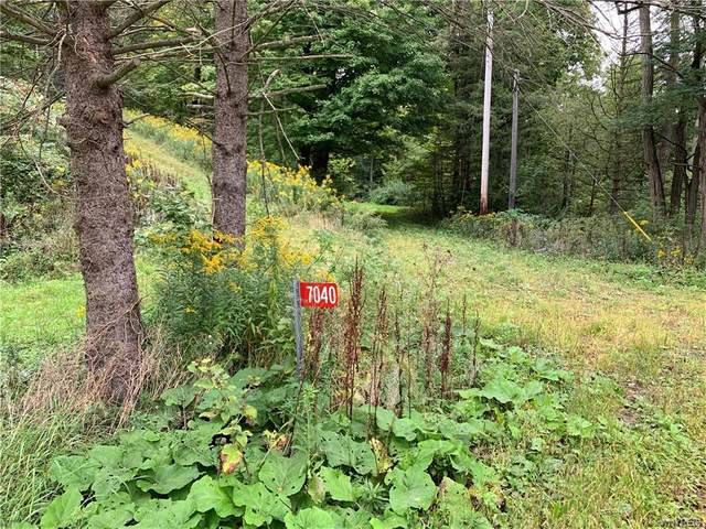 7040 Hinman Hollow Road, Mansfield, NY 14731 (MLS #B1294672) :: Lore Real Estate Services
