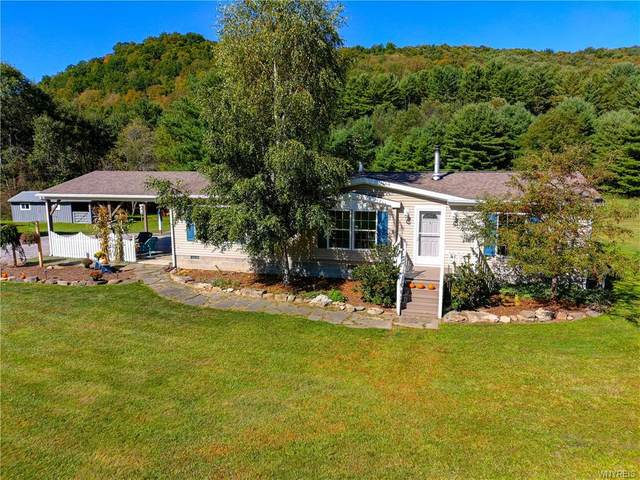 8620 County Road 1, Clarksville, NY 14739 (MLS #B1295588) :: Lore Real Estate Services