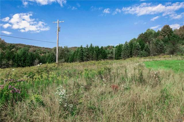 0 Witch Hollow Road, Ellicottville, NY 14731 (MLS #B1296311) :: Lore Real Estate Services
