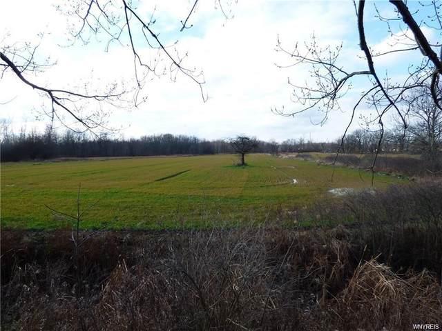 6762 Errick Road, Wheatfield, NY 14120 (MLS #B1298185) :: MyTown Realty