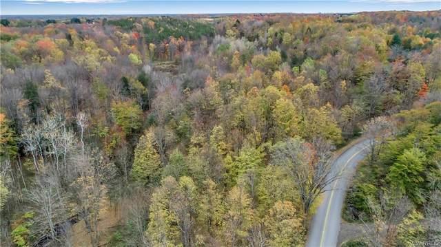 1140 Falls Road, Aurora, NY 14170 (MLS #B1298761) :: BridgeView Real Estate Services