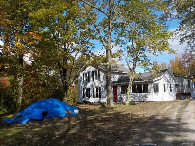 9325 S Hill Road, Colden, NY 14025 (MLS #B1299031) :: MyTown Realty