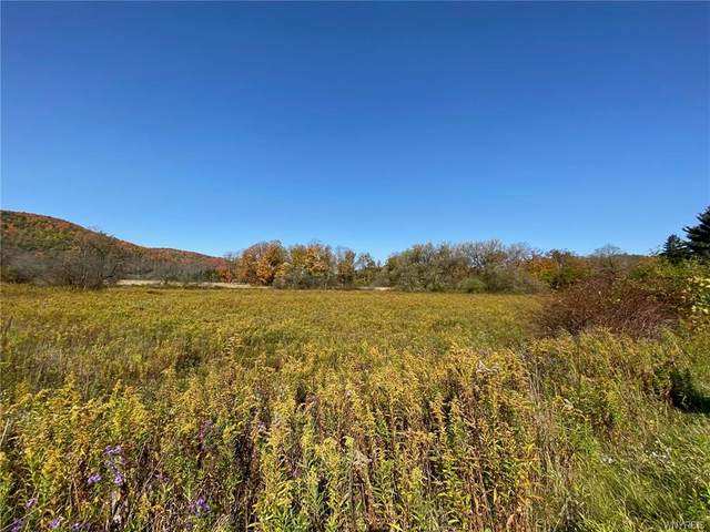 Lot A Route 98 Road, Great Valley, NY 14741 (MLS #B1299573) :: BridgeView Real Estate Services