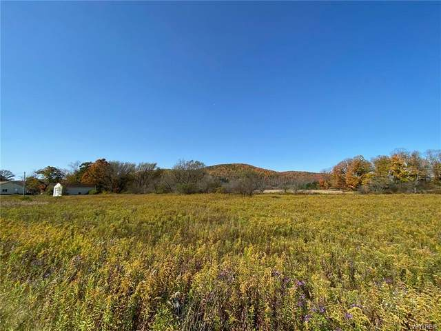 Lot B Route 98 Road, Great Valley, NY 14741 (MLS #B1299577) :: BridgeView Real Estate Services