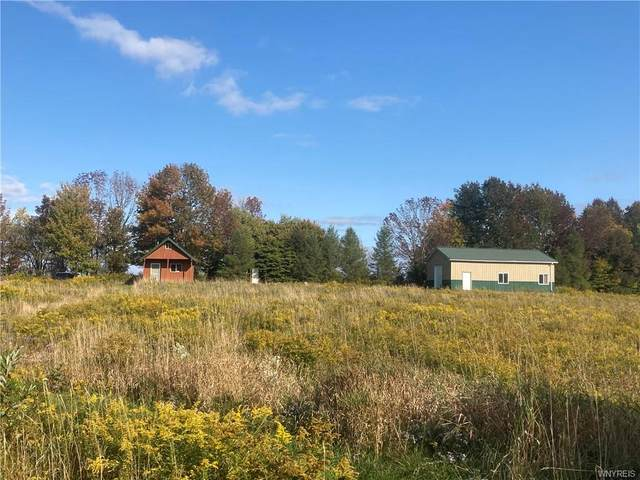 3959 Riceville Road, Machias, NY 14101 (MLS #B1299722) :: BridgeView Real Estate Services