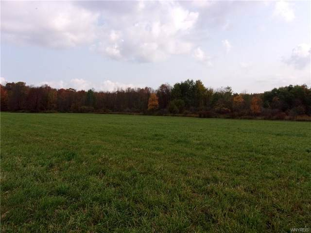 6947 VL Curriers Road, Arcade, NY 14009 (MLS #B1300570) :: BridgeView Real Estate Services