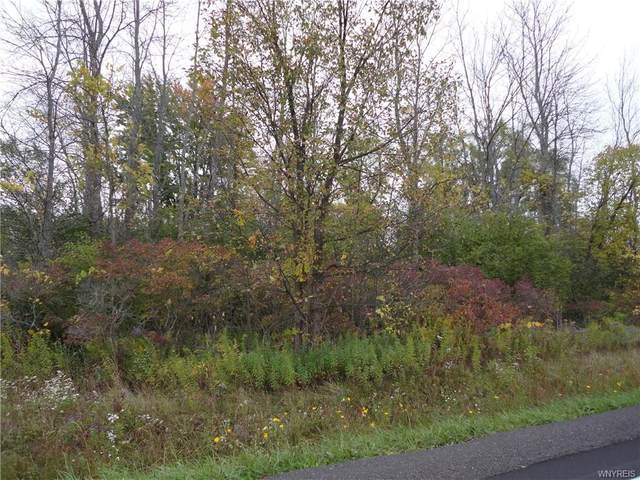 6415 Riddle Road, Royalton, NY 14094 (MLS #B1300770) :: BridgeView Real Estate Services
