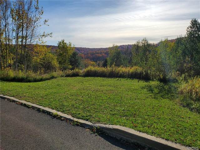10-12 Mckinley Drive, Ellicottville, NY 14731 (MLS #B1301011) :: BridgeView Real Estate Services