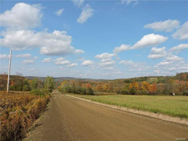 4189 Blouvet Road, Friendship, NY 14739 (MLS #B1301160) :: Avant Realty