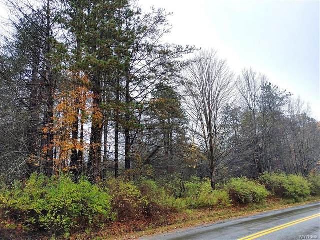 0 Toad Hollow Road, Mansfield, NY 14755 (MLS #B1302347) :: Mary St.George | Keller Williams Gateway