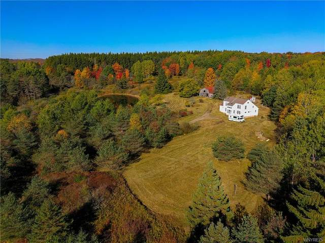 4671 Lynch Road, Alfred, NY 14803 (MLS #B1302728) :: Robert PiazzaPalotto Sold Team