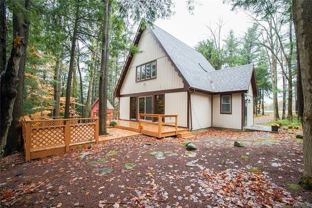 9411 Darien Road, Colden, NY 14170 (MLS #B1304294) :: Robert PiazzaPalotto Sold Team
