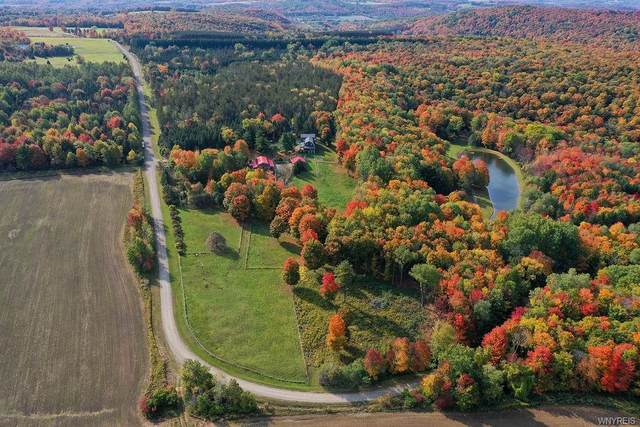 9493 Monk Hill Road, East Otto, NY 14729 (MLS #B1304426) :: MyTown Realty