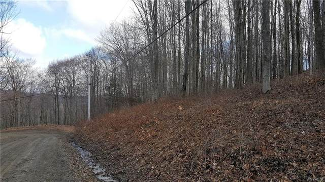 9 Creek Ridge, Ellicottville, NY 14731 (MLS #B1305793) :: 716 Realty Group