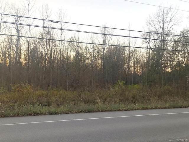 8100 Goodrich Road, Clarence, NY 14032 (MLS #B1307066) :: Avant Realty