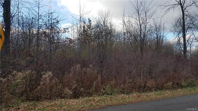 1569 Lansdowne Lane S, North Tonawanda, NY 14120 (MLS #B1308376) :: Avant Realty