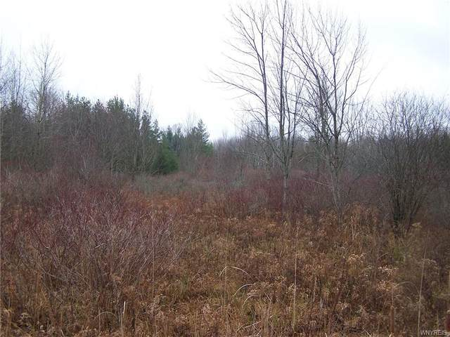 6 acres Partridge Road, Colden, NY 14033 (MLS #B1309137) :: Robert PiazzaPalotto Sold Team
