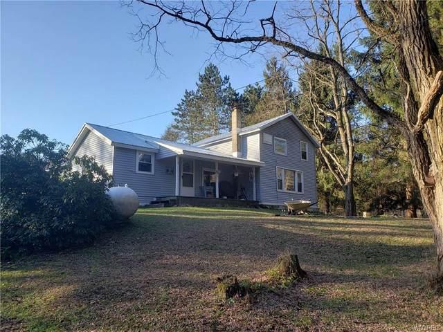 11055 Leon Road, Leon, NY 14719 (MLS #B1309301) :: BridgeView Real Estate Services