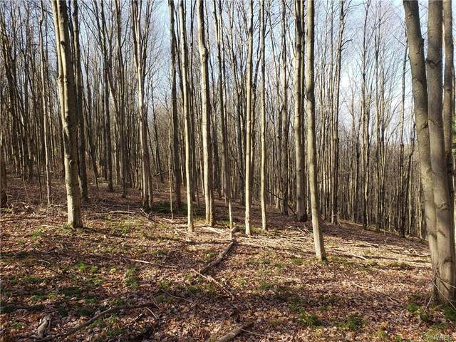 18 acres Union Hill Road, Ischua, NY 14743 (MLS #B1309697) :: BridgeView Real Estate Services
