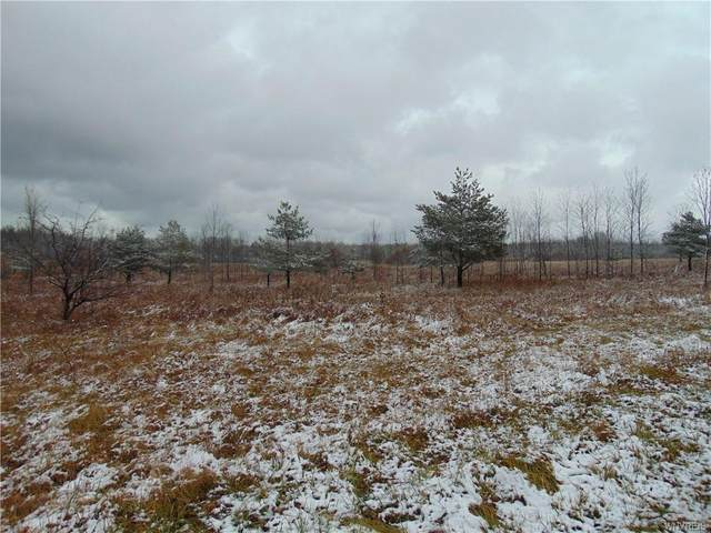 0 Sturgeon Point Road, Evans, NY 14047 (MLS #B1310266) :: BridgeView Real Estate Services