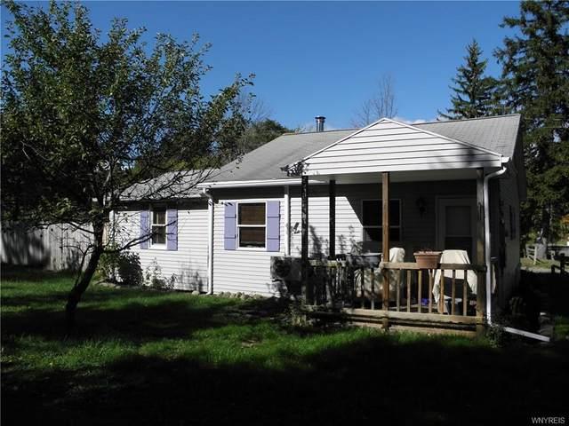 9860 Utica Street, Evans, NY 14006 (MLS #B1314277) :: TLC Real Estate LLC