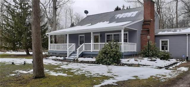 7340 Delamater Road, Evans, NY 14047 (MLS #B1314413) :: TLC Real Estate LLC