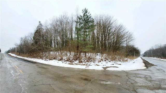 11286 Ketchum Road, North Collins, NY 14111 (MLS #B1315188) :: Mary St.George | Keller Williams Gateway