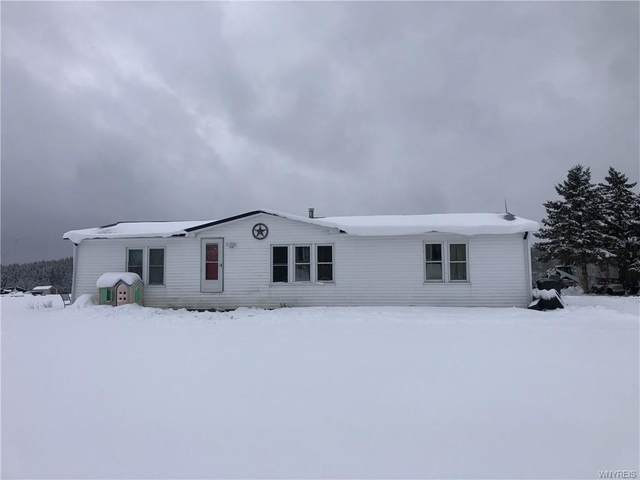 7144 Lyonsburg Road, Eagle, NY 14024 (MLS #B1315452) :: Mary St.George | Keller Williams Gateway
