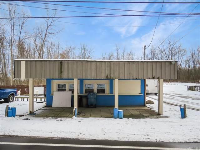 8461 Lake Shore Road, Evans, NY 14006 (MLS #B1316452) :: MyTown Realty