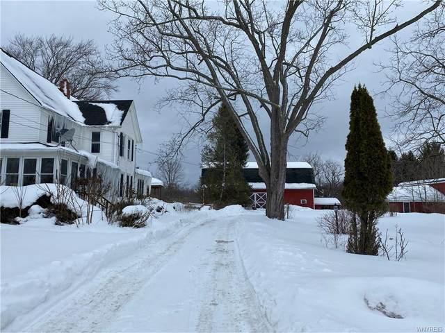 1654 Cain Road, Evans, NY 14111 (MLS #B1320331) :: MyTown Realty
