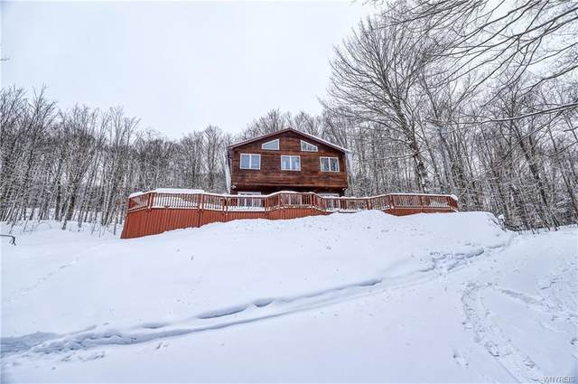 8985 Route 219, Ashford, NY 14171 (MLS #B1320587) :: BridgeView Real Estate Services