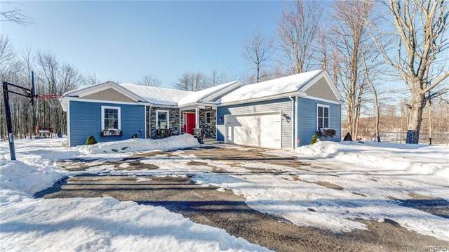 6745 Heltz Road, Hamburg, NY 14085 (MLS #B1320815) :: Robert PiazzaPalotto Sold Team