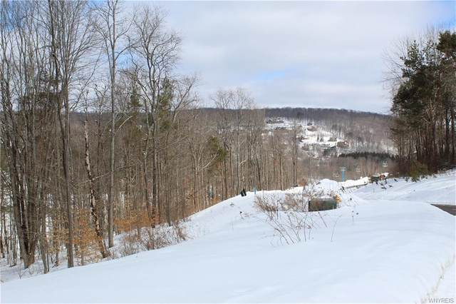 1 Westmont, Mansfield, NY 14731 (MLS #B1321516) :: MyTown Realty