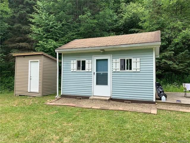 8991 Davis Road, Clarksville, NY 14727 (MLS #B1323605) :: MyTown Realty