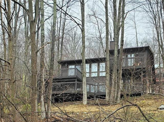 6652 Thistle Road, Ellicottville, NY 14731 (MLS #B1326927) :: TLC Real Estate LLC