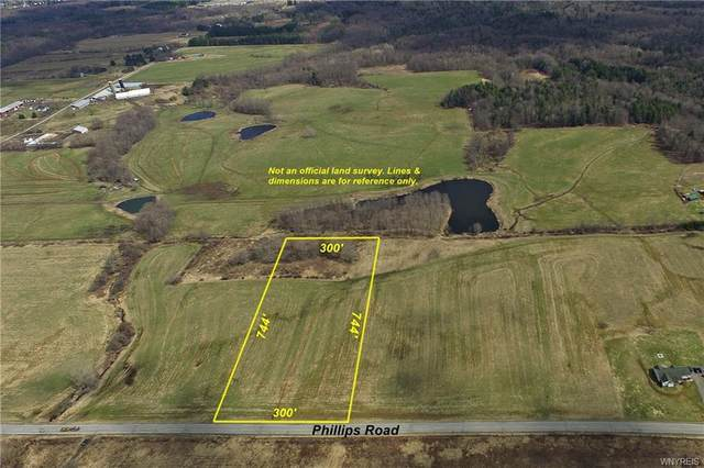 5 acres Phillips Road - Lot #3, Holland, NY 14080 (MLS #B1330341) :: Lore Real Estate Services