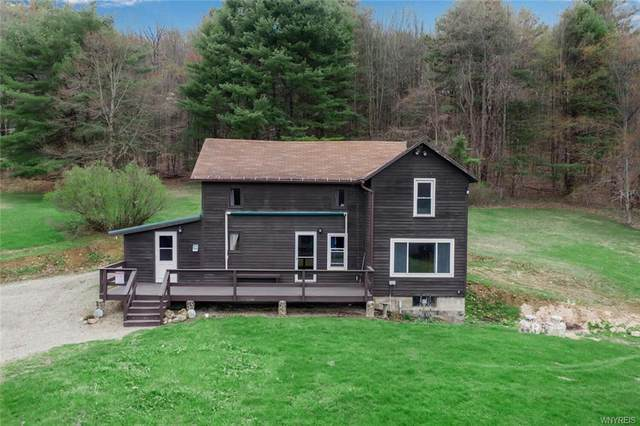 10560 Youngs Road, Cold Spring, NY 14783 (MLS #B1330573) :: Mary St.George | Keller Williams Gateway