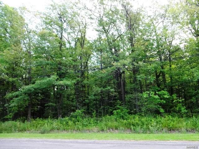6735 Conner Road, Clarence, NY 14051 (MLS #B1331385) :: 716 Realty Group