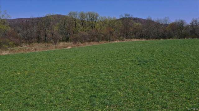 Lot #3 Nys Route 98, Great Valley, NY 14741 (MLS #B1331856) :: BridgeView Real Estate Services