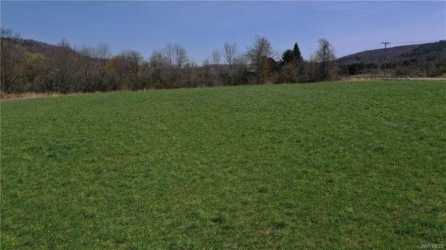 Lot #2 Nys Route 98, Great Valley, NY 14741 (MLS #B1331860) :: BridgeView Real Estate Services