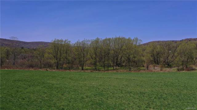 Lot #1 Nys Route 98, Great Valley, NY 14741 (MLS #B1331862) :: BridgeView Real Estate Services