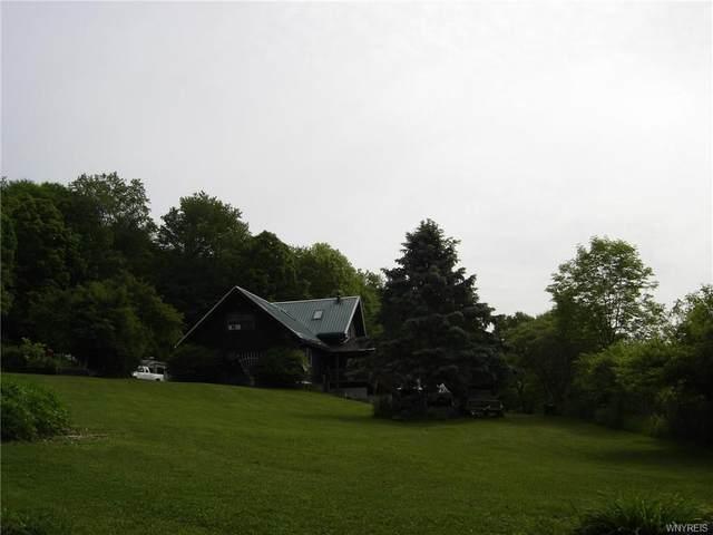3510 Fay Hollow Road, Hinsdale, NY 14743 (MLS #B1335209) :: TLC Real Estate LLC