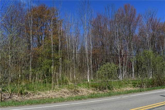 VL Trevett Road, Concord, NY 14141 (MLS #B1336062) :: Robert PiazzaPalotto Sold Team