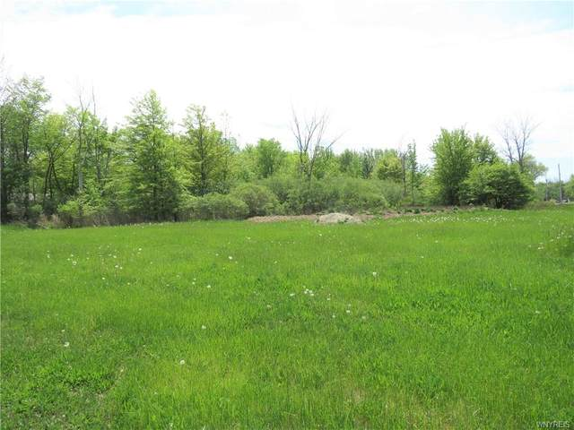 1062 Whitehaven Road, Grand Island, NY 14072 (MLS #B1338345) :: 716 Realty Group