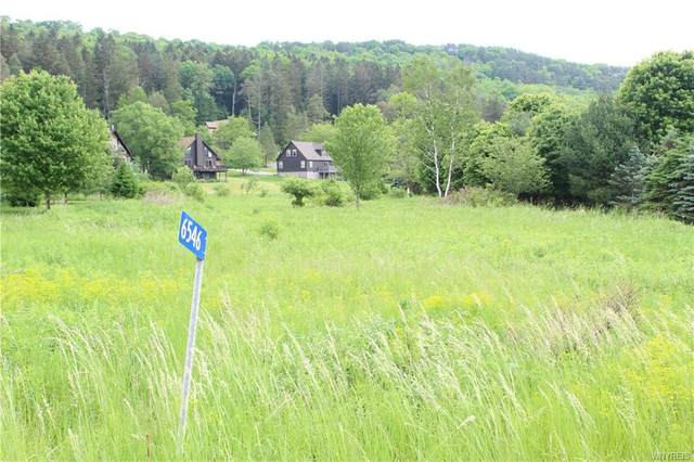 6546 Maples Road, Ellicottville, NY 14731 (MLS #B1342410) :: Lore Real Estate Services