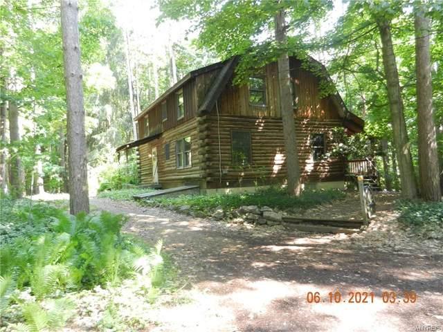 8171 Sisson Highway, Eden, NY 14057 (MLS #B1343575) :: BridgeView Real Estate