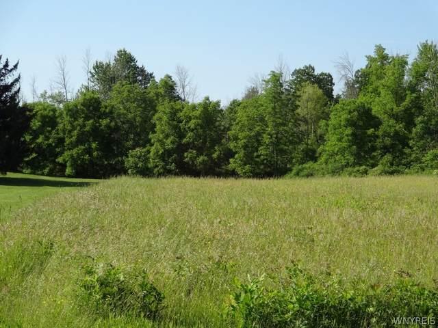 11959 Buckwheat Road, Newstead, NY 14004 (MLS #B1343850) :: BridgeView Real Estate Services